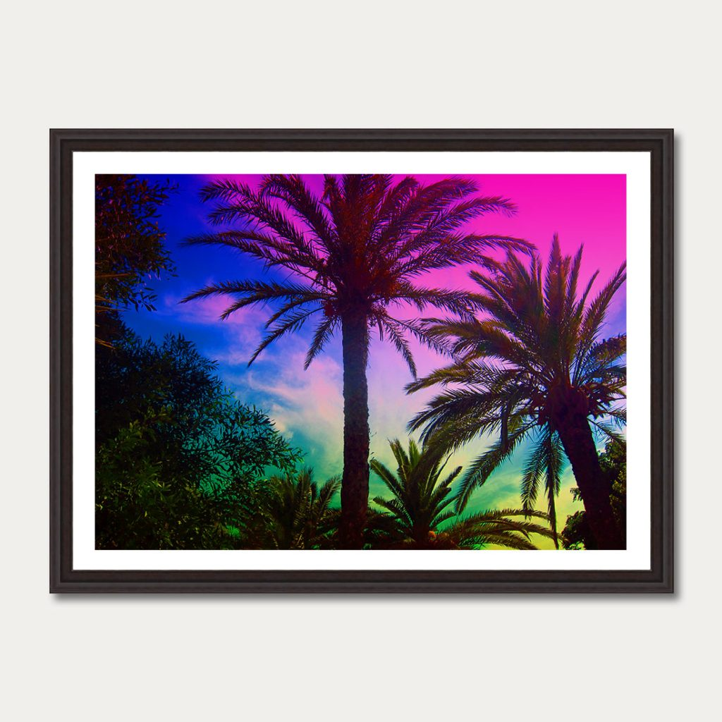 photoartgallery-palmtrees-3