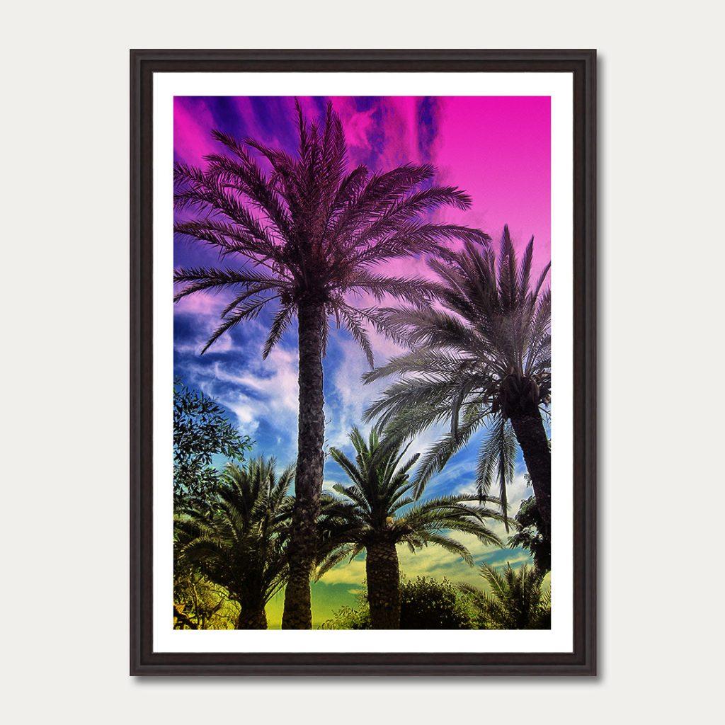 photoartgallery-palmtrees-4