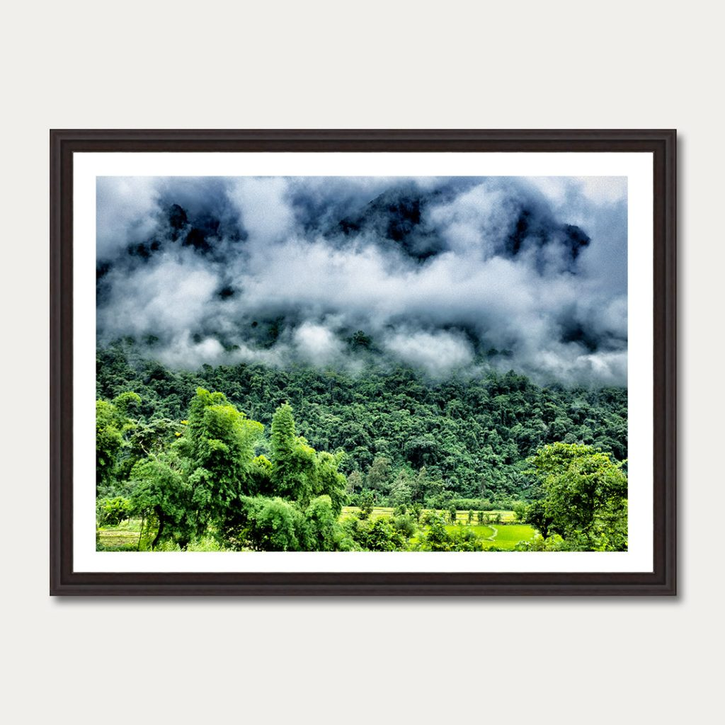 The_Sky_&_Jungle_II
