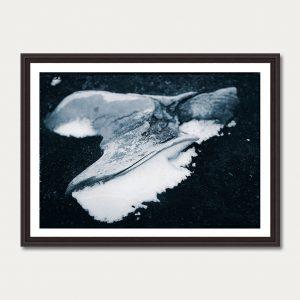 PhotoArtGallery Antarctica Iwein Maassen 8