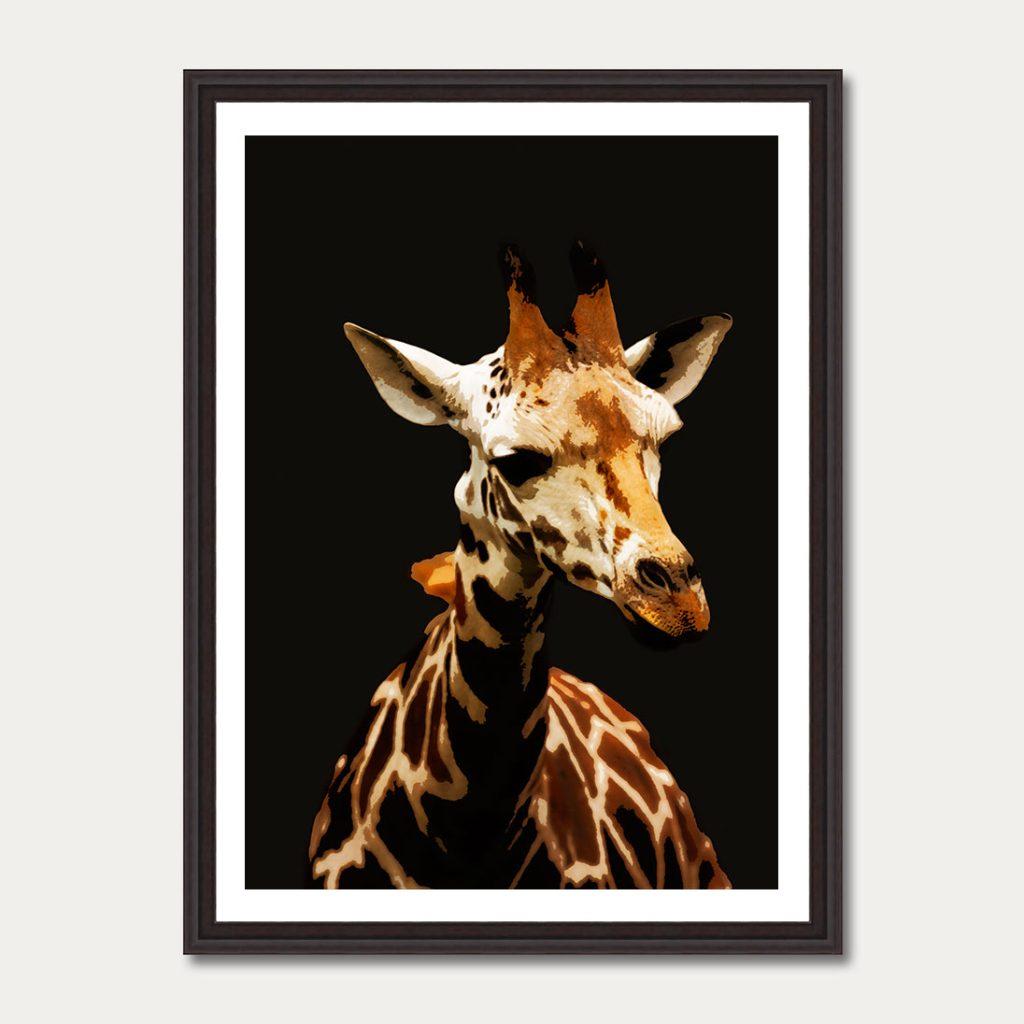 photoartgallery-animals-2