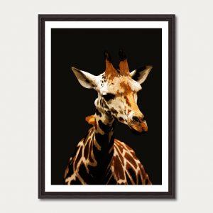 Photo Art Gallery animals 2
